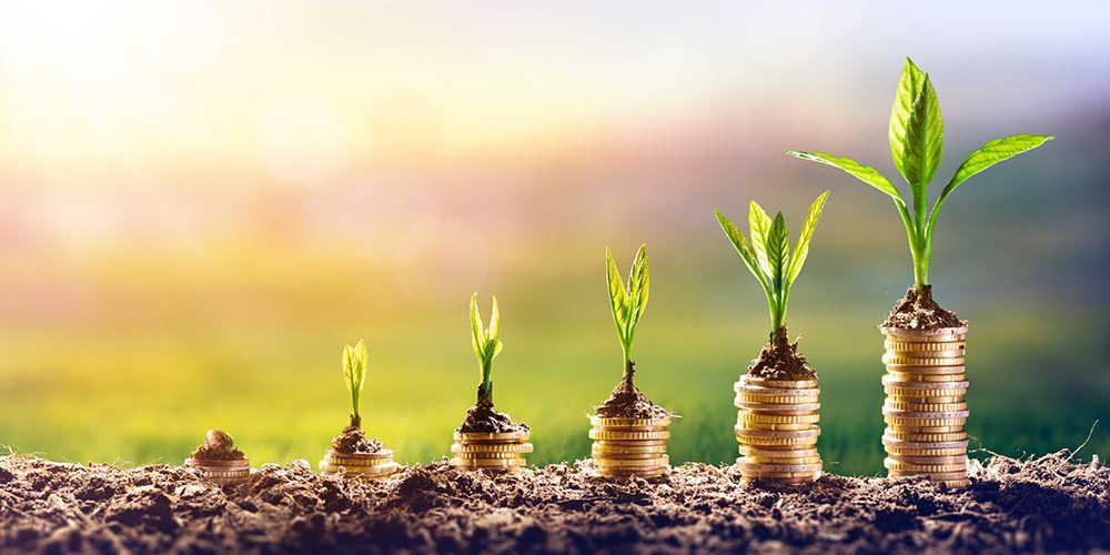warrp-seed-funding-round-september